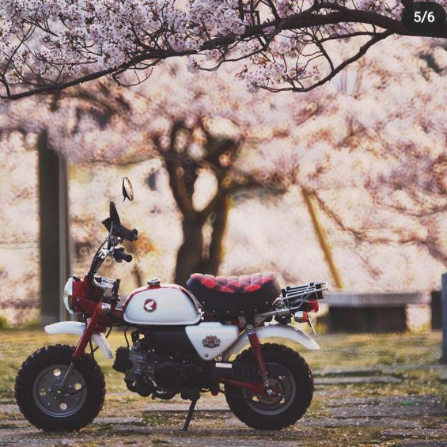 Honda monkey 50週年記念版限量車
