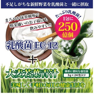 【82無限】台灣現貨 日本原裝進口EC-12乳酸菌加大麥若葉青汁3g x 24包 桃園市