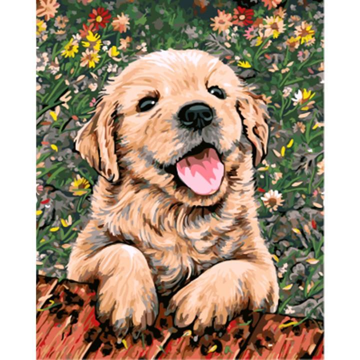 ArtLife 藝術生活 DIY 數字 油畫 彩繪 DT154 花園拉拉_40X50cm 現貨