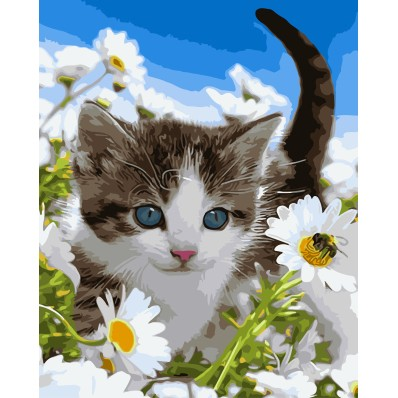 ArtLife 藝術生活 現貨 DIY 數字 油畫 彩繪 DT011 花園小貓 40X50cm