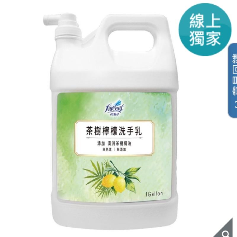 花仙子 茶樹檸檬洗手乳 3.8公升 防疫 洗手乳 好市多 costco