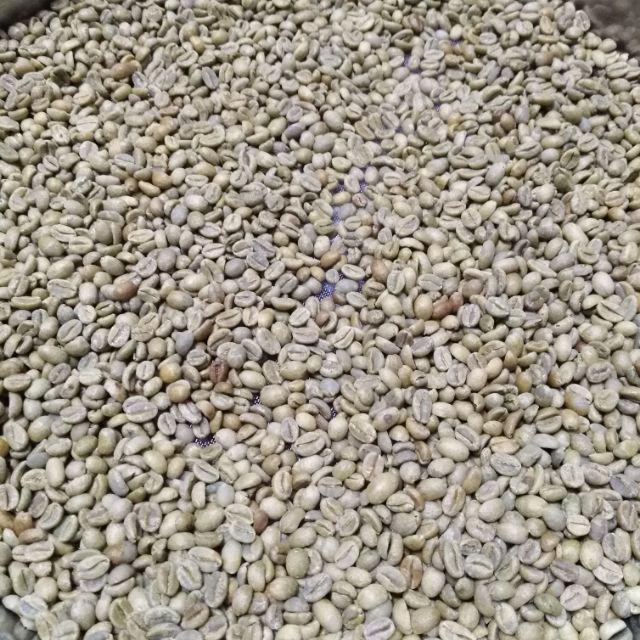 咖啡生豆,耶加雪菲  蓋德奧 艾廸朵村 日曬G1