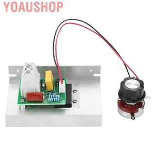 Yoaushop 【高品質】工具房 10000W AC 220V 可控矽電壓