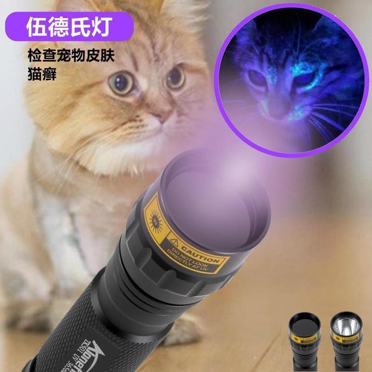10W紫外線手電筒熒光劑真菌檢測燈 酒店精液檢測  伍德氏燈 二代紫光手電筒 貓蘚 寵物尿液檢測