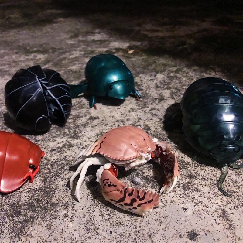 【 ZOO TOYS  玩具店 】BANDAI DANGO MUSH  糰子蟲 饅頭蟹 環保扭蛋 可動