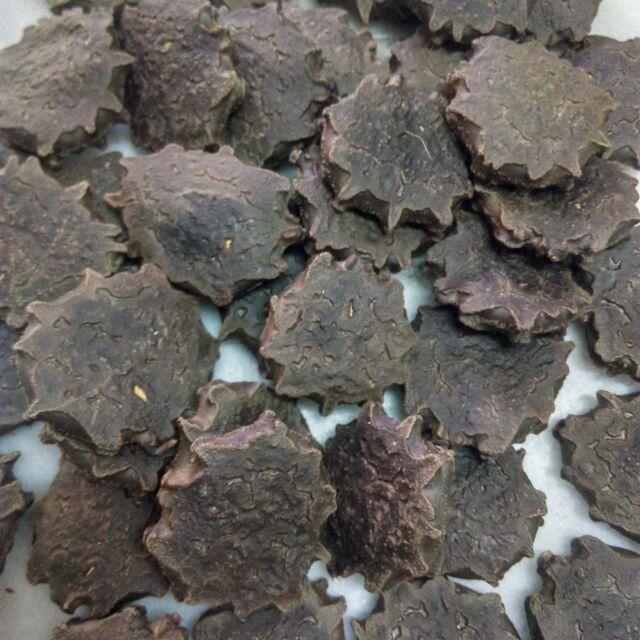 木鱉果種子越南品種大果