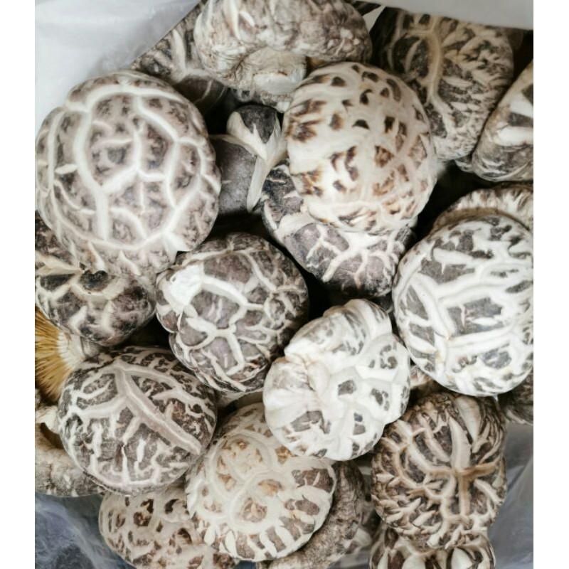 日本乾香菇 乾香菇 花菇 禮盒  乾干貝 香菇 高湯