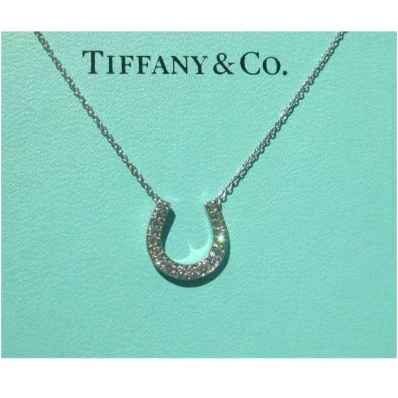 Tiffany&Co馬蹄鑽石項鍊