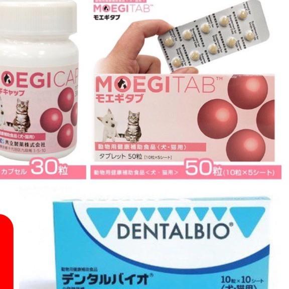 🐈🐈史皮寵物🐩🐩貝節益 膠囊30顆 錠狀50顆 口益適100錠 日本共立(另有安適得歡迎下單)