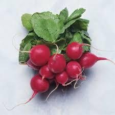 新鮮現採農場進口直送香甜一口櫻桃蘿蔔2公斤