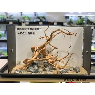 小缸(2尺)精選杜鵑木(黃金流木)87號 沉木 水族缸造景 主景 新竹縣
