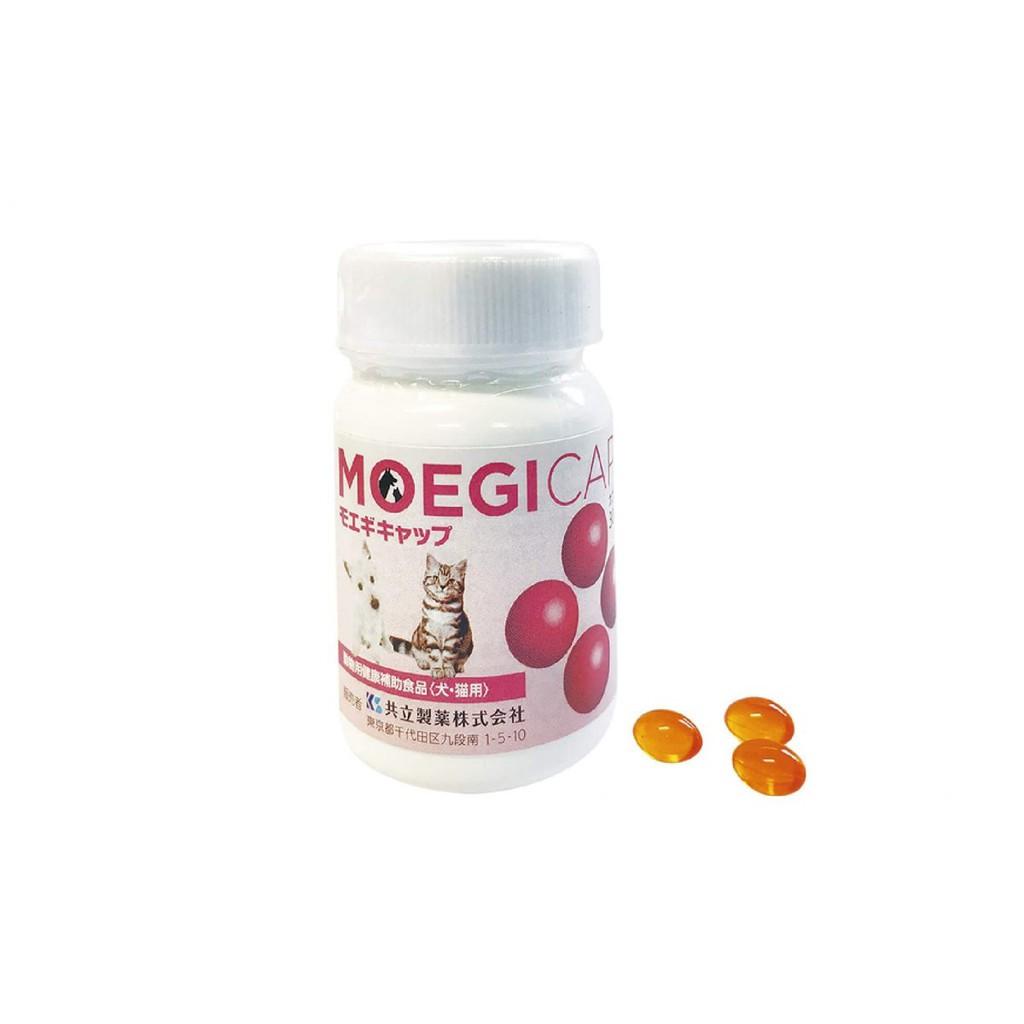 日本共立MOEGITAB 貝節益30粒罐裝膠囊 寵物犬貓關節