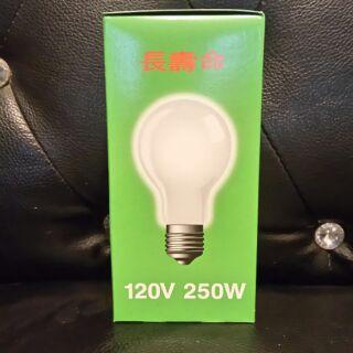 120V  250W 夜市燈泡 批發價25元 桃園市