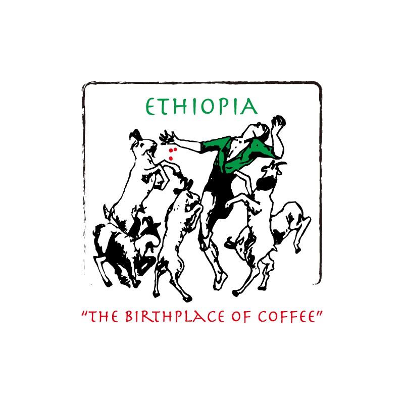 衣索比亞 耶加雪菲 科契爾 牧羊人 G1【水洗】