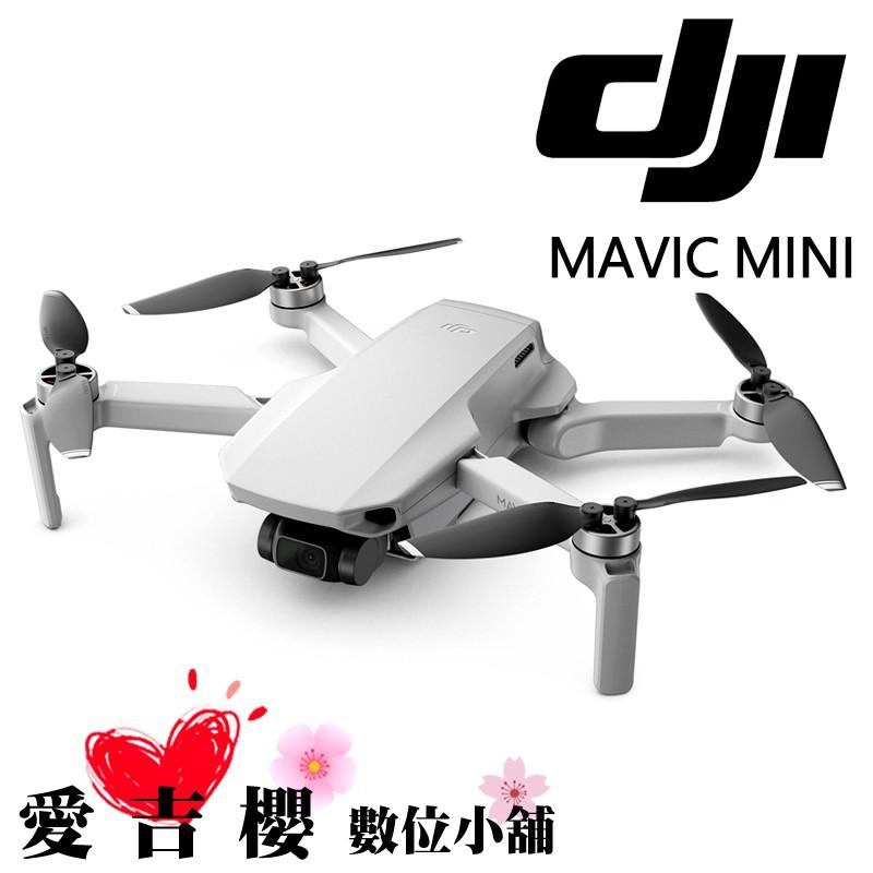 DJI 大疆 創新 Mavic Mini 超輕巧型 空拍機 暢飛套裝 公司貨 套裝 無人 折疊式 送128G
