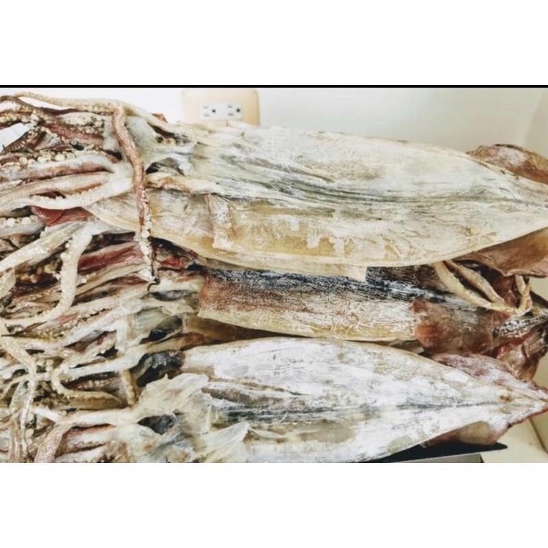 超大尾~阿根廷魷魚 約125克以上/1尾(今年最新鮮船曬魷魚)一夜乾 魷魚乾 干魷魚 烤魷魚 日本干貝 尤魚