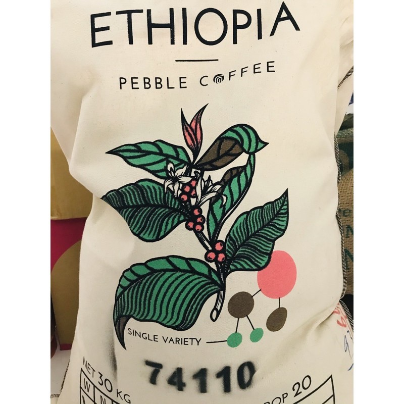 ☘田氏啡魔力☘甜感飽滿🇪🇹衣索比亞 日曬 古吉 烏拉嘎  74110 單一品種  G1 20/05 批次