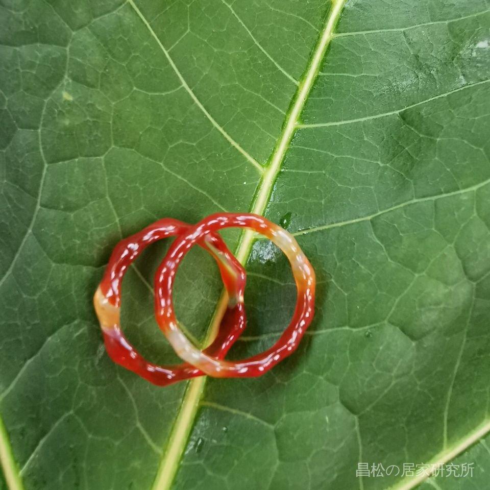 純天然瑪瑙戒指紅玉髓戒指水晶黑紅綠黃白瑪瑙男女情侶款