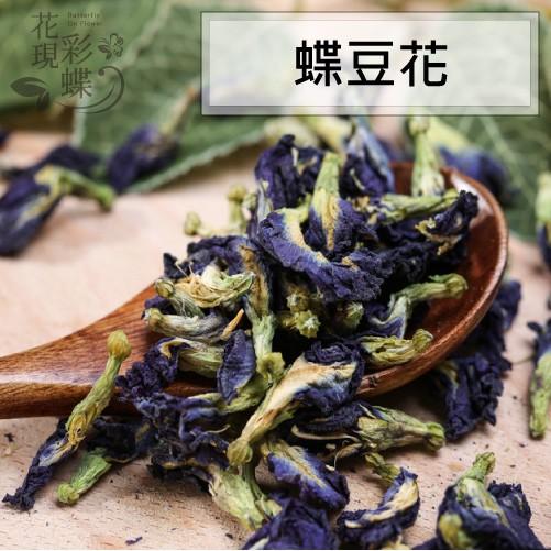 【花現彩蝶】蝶豆花(僅供取花之天然食用色素使用)