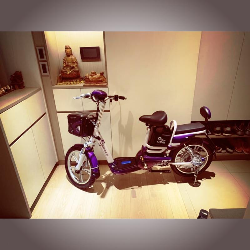 GCE電動車EB113(紫色)