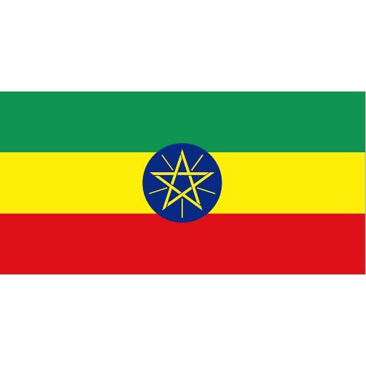 <生豆500g /包>衣索比亞 耶加雪菲 艾瑞莎 水洗 G1