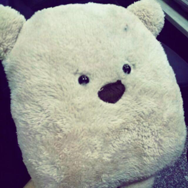 [9折免運]療癒系方熊抱枕 出清特價 售完為止