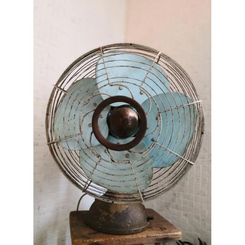 早期順風 平頭古董電風扇 順風牌 老電扇