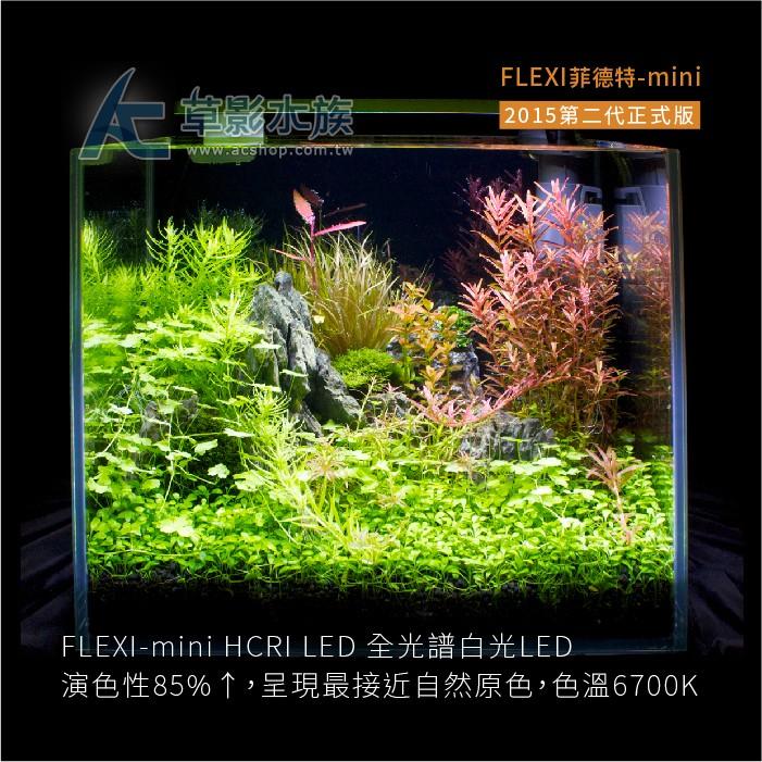 【AC草影】免運 FLEXI 菲德特 MINI 2015 第二代正式版(黑色)【一組】
