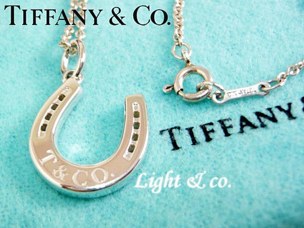【Light & co.】專櫃真品已送洗 TIFFANY & CO 925 純銀 馬蹄 項鍊 經典款 horeseshoe