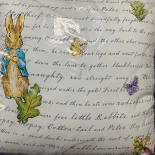 1929比得兔牛津大學靠墊抱枕尺寸約50*50公分