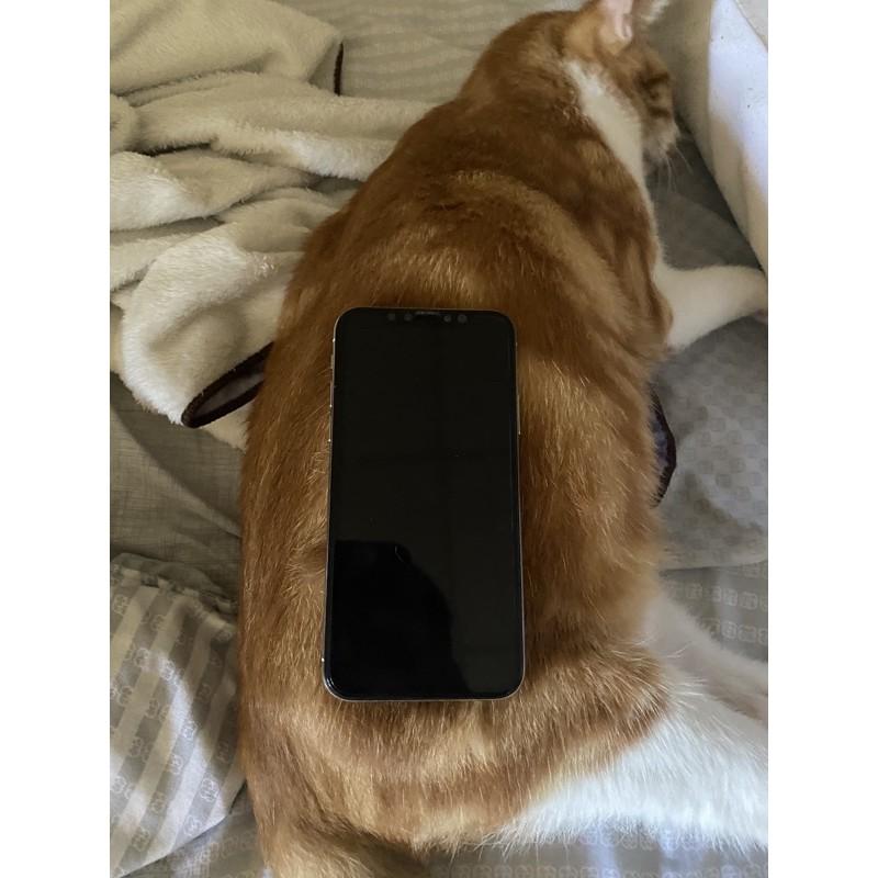 實體店iPhone X 64g 256g 銀色 黑色 全螢幕 5.8吋二手 台中 中古