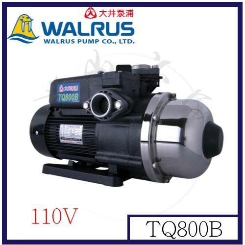 『青山六金』附發票 大井泵浦 電子穩壓加壓馬達 TQ800B  公寓住宅給水系統 1HP 低噪音 自動供水系統