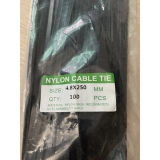 一隻 束帶 束線帶 尼龍束帶 紮線帶 4.8mm x 250 mm 自鎖式束帶 新北市
