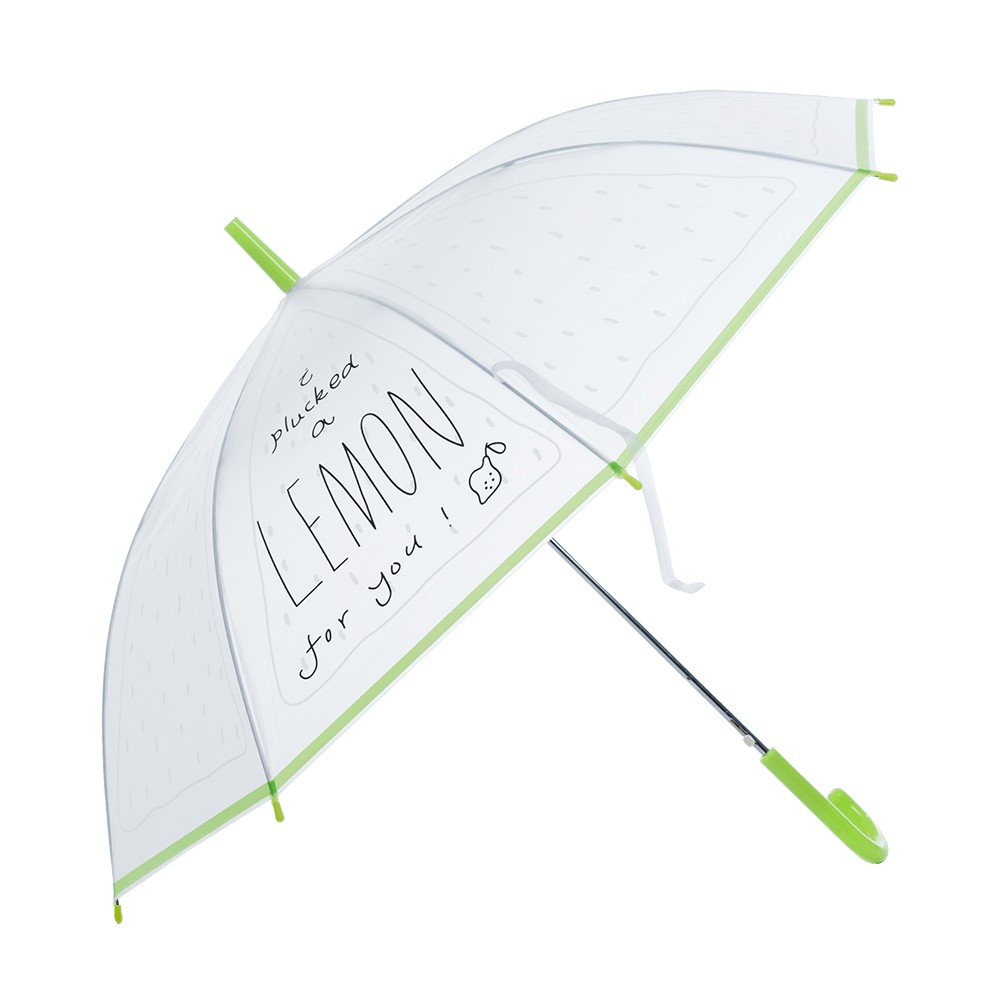 麗尚秀 清新檸檬系列 亮彩包邊塗鴉長柄直傘《綠》晴雨傘 太陽傘 遮陽傘 雨傘 防潑水 自動傘 彎把傘【FA298】