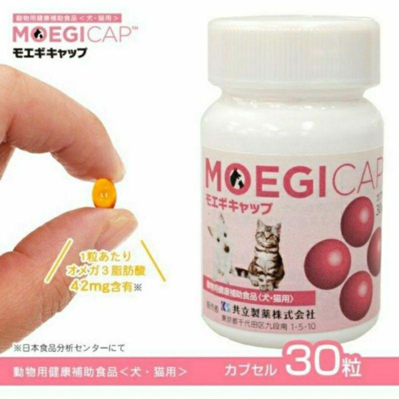 🐨露比小屋🐨貝節益 膠囊30顆 錠狀50顆 日本共立