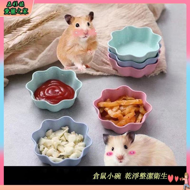 📣領券滿減🤩寵物陶瓷碗 倉鼠食盆 倉鼠飼料碗 倉鼠陶瓷碗陶瓷飼料碗 陶瓷小碗 布丁鼠 豚鼠 松鼠 黃金鼠 倉鼠用品