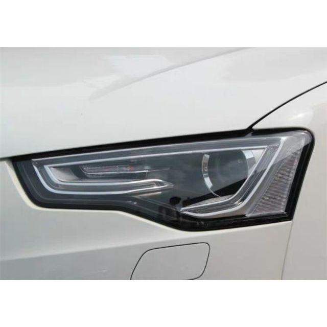 福斯 VW 奧迪 Audi 大燈燈殼,外殼,外罩,燈罩 A4 A5  A6 A8