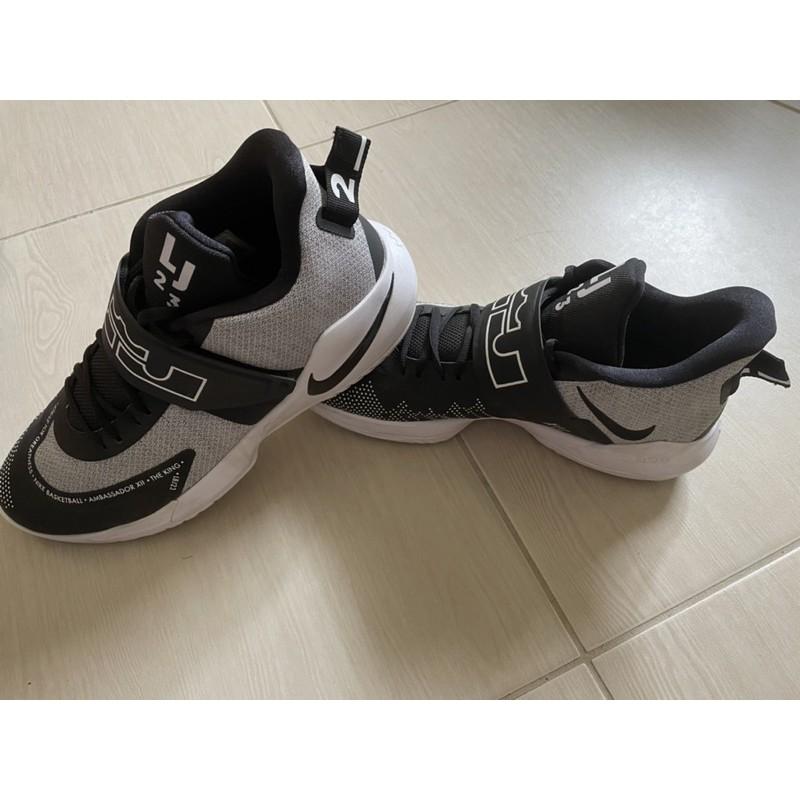 Nike LeBron Ambassador XII 男生籃球鞋