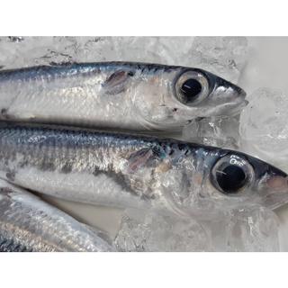 【海鮮7-11】 飛魚蝴蝶切(1隻裝)    殺清300-400克/ 隻    肉質細緻好吃! **每隻60元** 花蓮縣