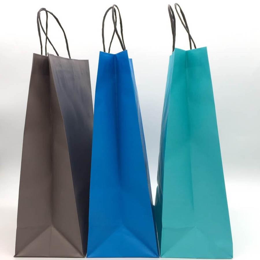 紙袋/規格L/ 1箱250入/禮品包裝/購物袋/服飾商場手提紙袋【現貨免運】