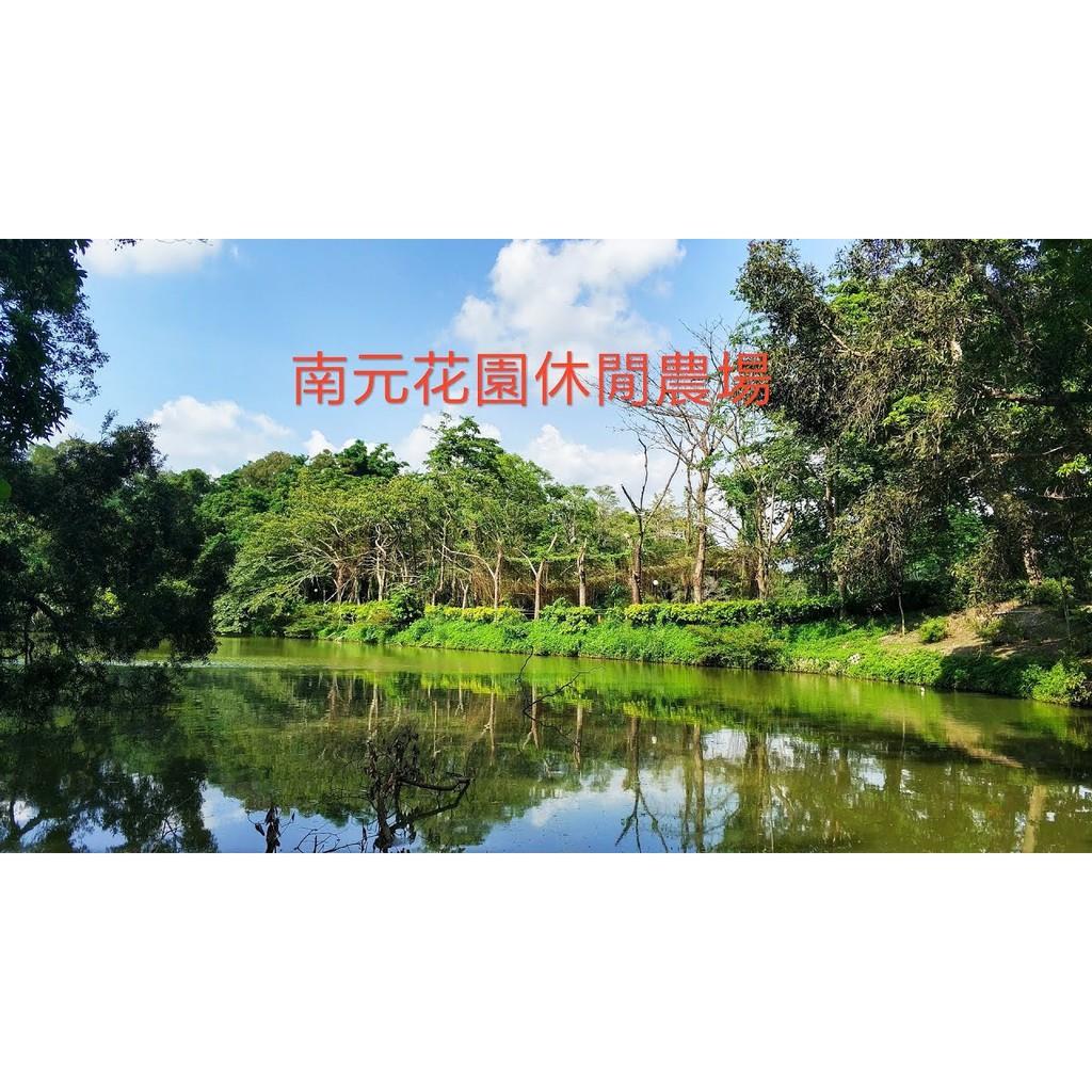 【涵の小窩】台南南元休閒農場門票