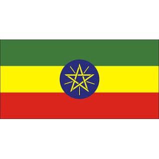 衣索比亞  耶加雪菲 阿利姆 水洗 G1
