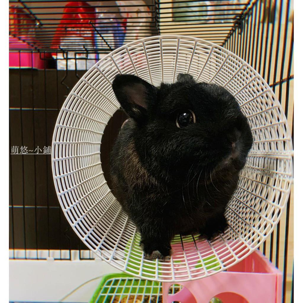 限時免運 寵物用品森度兔兔隧道龍貓兔子卷天竺鼠隧道 川井同款空中隧道圓形隧道