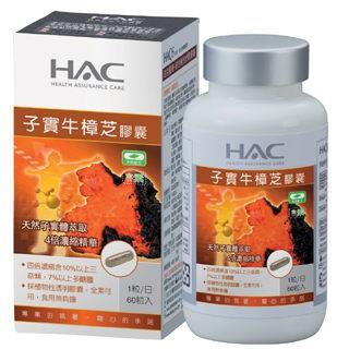 永信HAC-高濃縮子實牛樟芝膠囊(60粒/瓶)