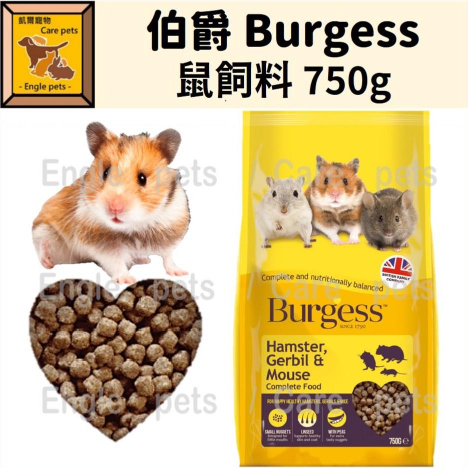 ╟Engle╢ 伯爵 Burgess 鼠飼料 750g 倉鼠 黃金鼠 一線鼠 三線鼠 沙鼠 鼠飼料 倉鼠飼料 鼠主食